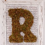 Mossy Monogrammed Letter