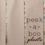 peekaboo pleats pillowcase and zip pouch