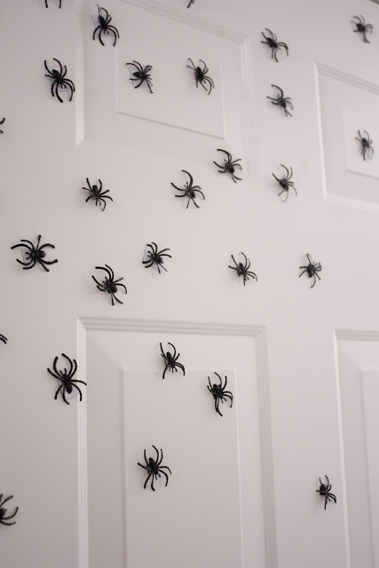 Image result for magnetic spiders