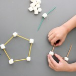Marshmallow and Toothpick Shapes