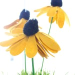 Black-Eyed Susan Pom Flowers