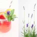 Fresh Raspberry Lavender Lemonade