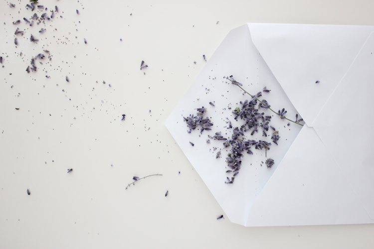 Lavender Sachets (8 of 15)