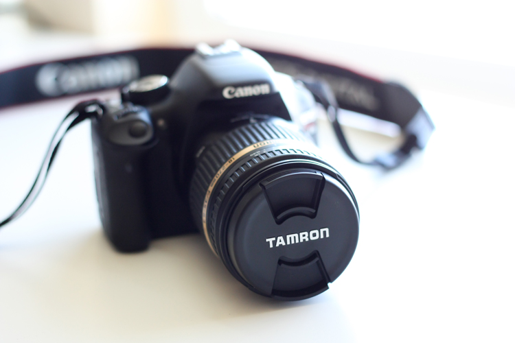 Tamron Review (4 of 25)