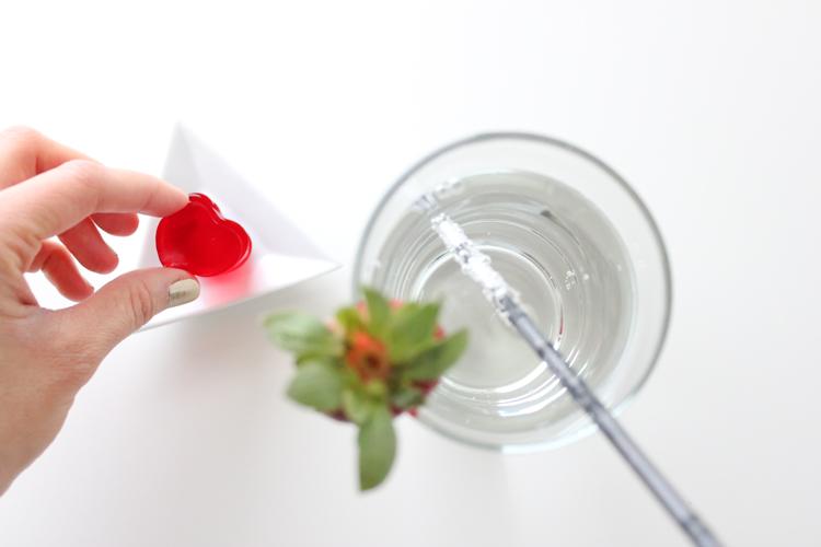 fizzy jello drinks (5 of 28)