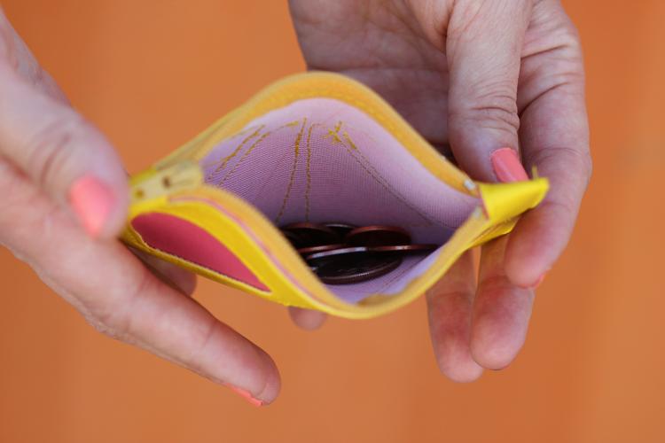 Citrus Wedge Coin Purse TUTORIAL - Delia Creates