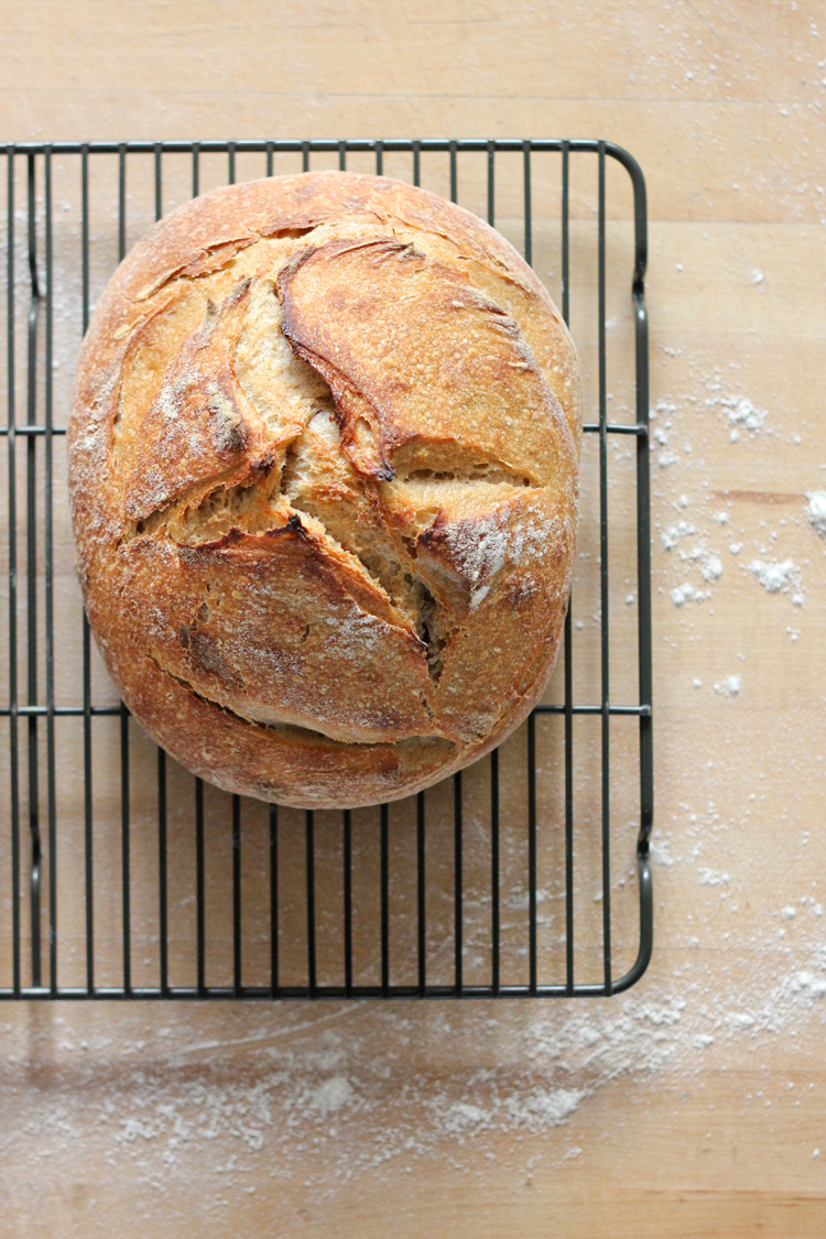 Sourdough bread baking from scratch // Delia Creates for Craftsy