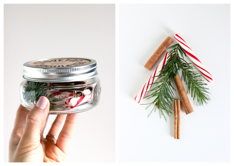 Stove Top Potpourri Neighbor Gifts - Three recipes + a free printable! // Delia Creates