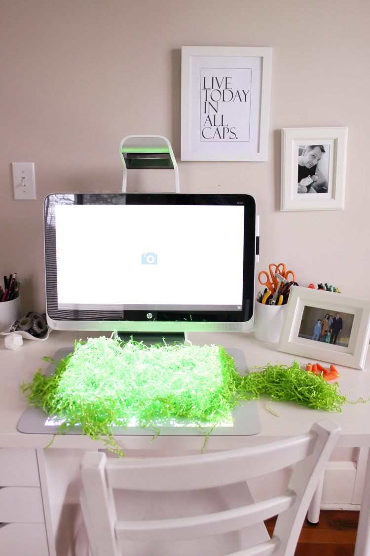 HP Sprout and Easter grass paper - Free Printable! // Delia Creates