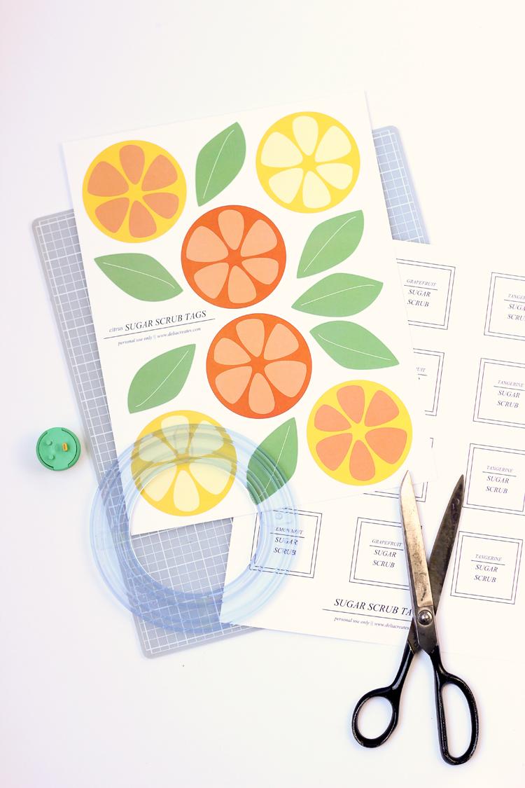Citrus Sugar Scrubs recipes + FREE printable!  // Delia Creates