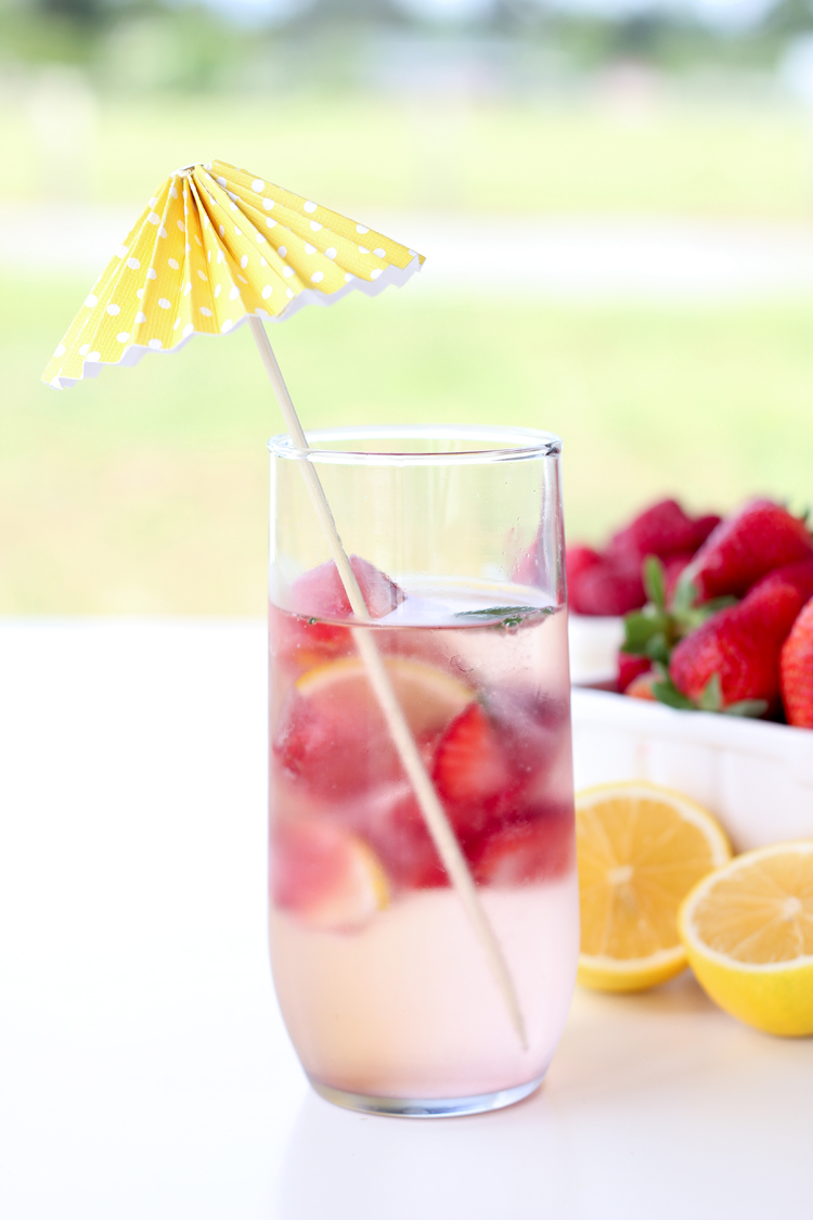 berry filled juice ice cubes...adds flavor to any drink while it melts // Delia Creates