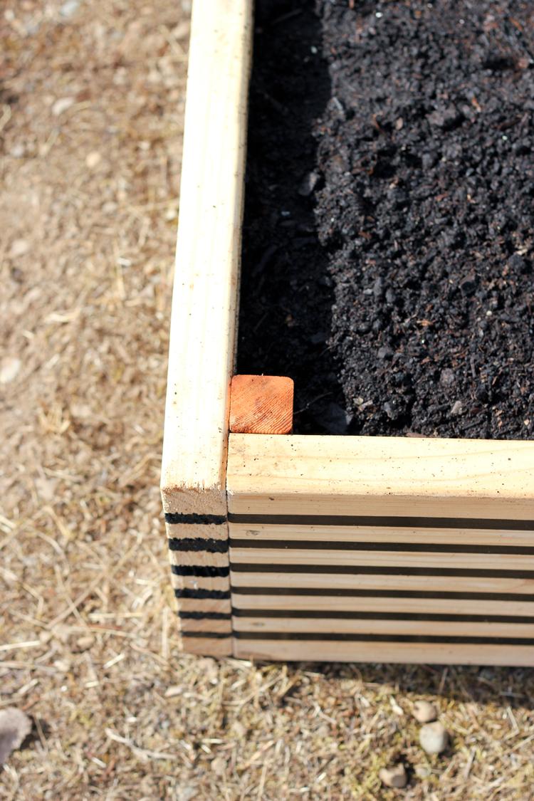 Striped Raised Garden Beds // Delia Creates