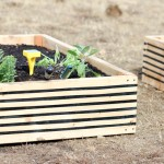 Striped Raised Garden Beds + Edyn Garden Sensor Review