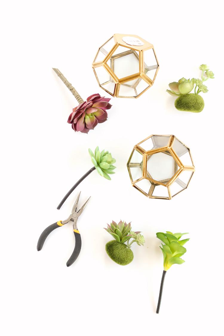 Faux Succulent Terrarium TUTORIAL // www.deliacreates.com