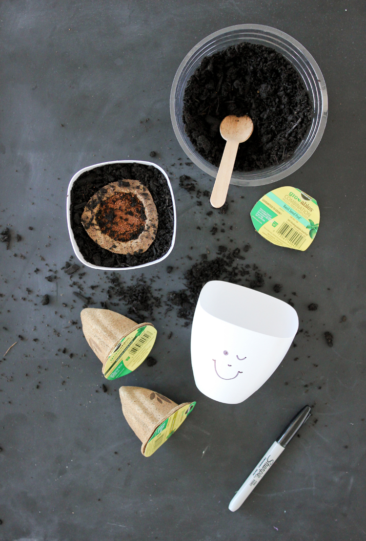 Fun Way to Plant Herbs With Kids // www.deliacreates.com