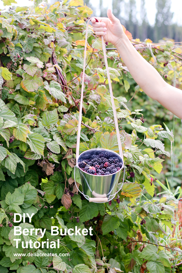 DIY Berry Bucket Tutorial // www.deliacreates.com