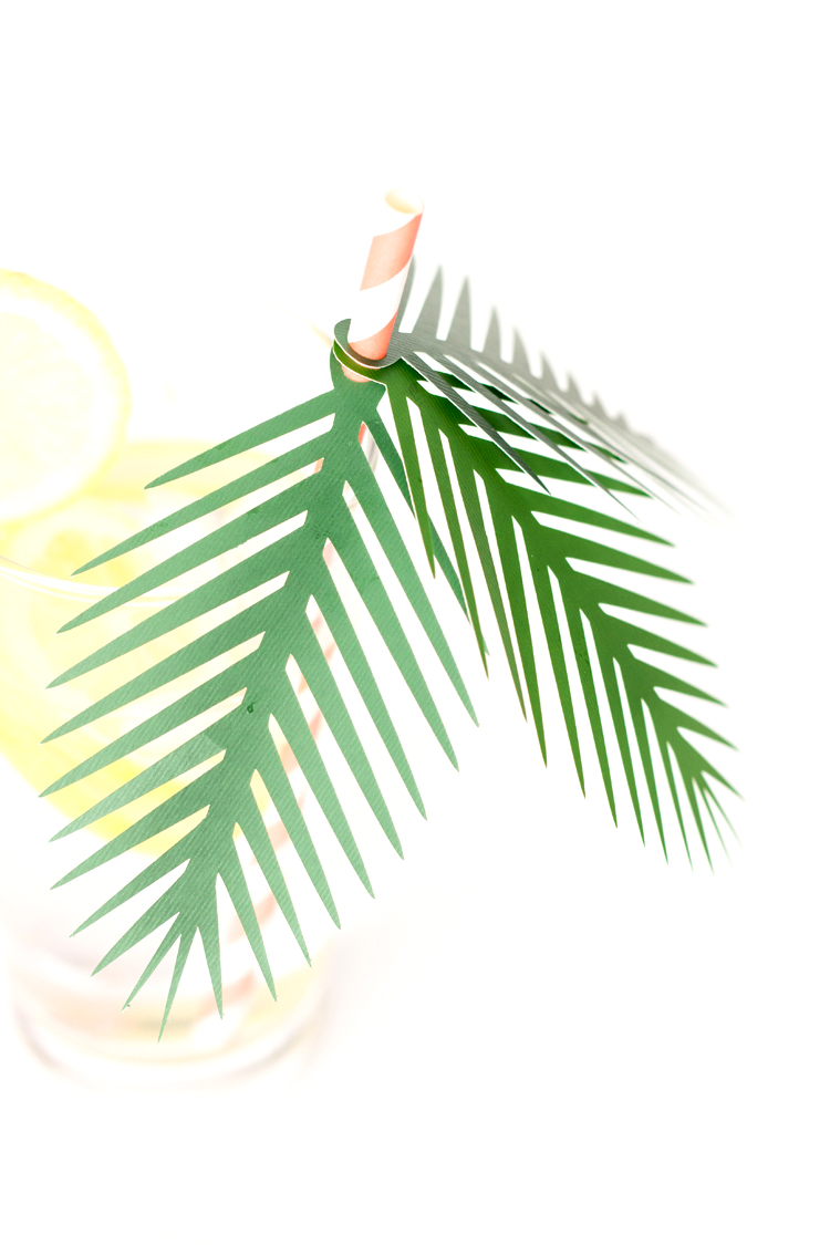 Paper Palm Frond Party Decor + Free Cut Files // www.deliacreates.com