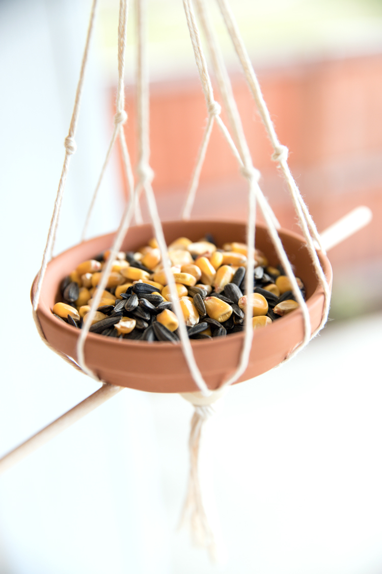 Video Tutorial: Simple Modern Bird Feeder // www.deliacreates.com + tips for finding peanut free bird seed