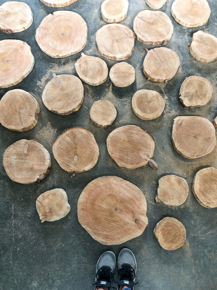 Creating a Wood Round Path // www.deliacreates.com