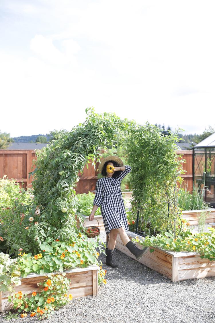 Raised Bed Garden Arch Trellis TUTORIAL// www.deliacreates.com
