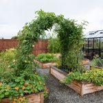 Raised Bed Garden Arch Trellis