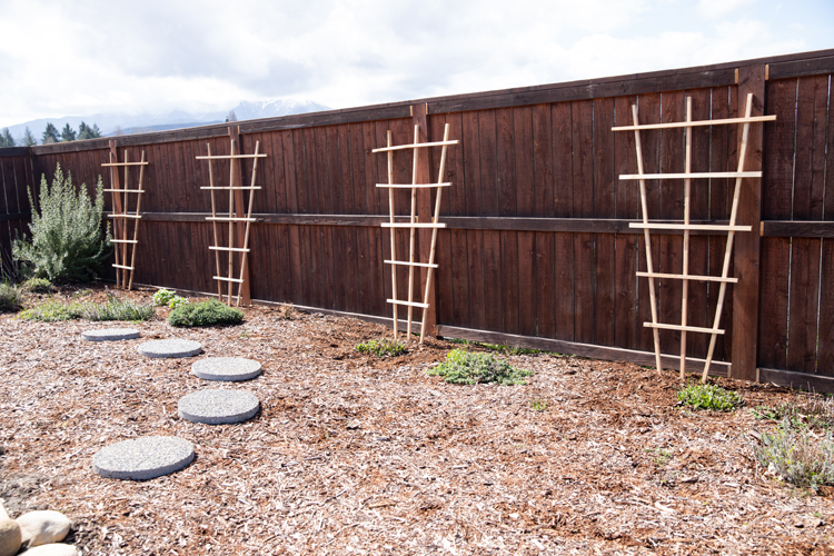 Lattice Garden Trellis Tutorial // www.deliacreates.com