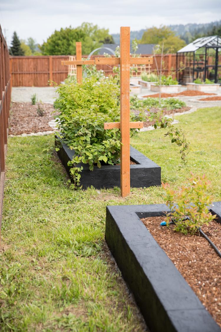 DIY Cement Garden Beds // www.deliacreates.com